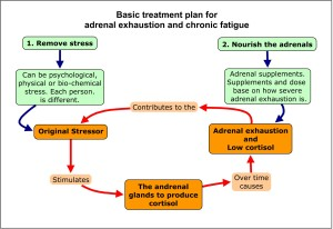 treatadrenalfatigue