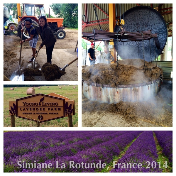 Young Living France