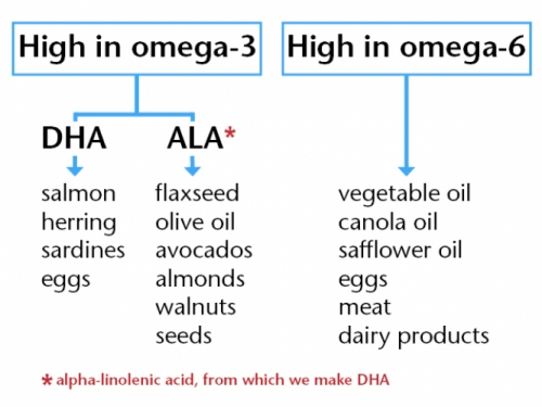 Fish Oil For Autism Epa Dha And The Low Down On Omega 3